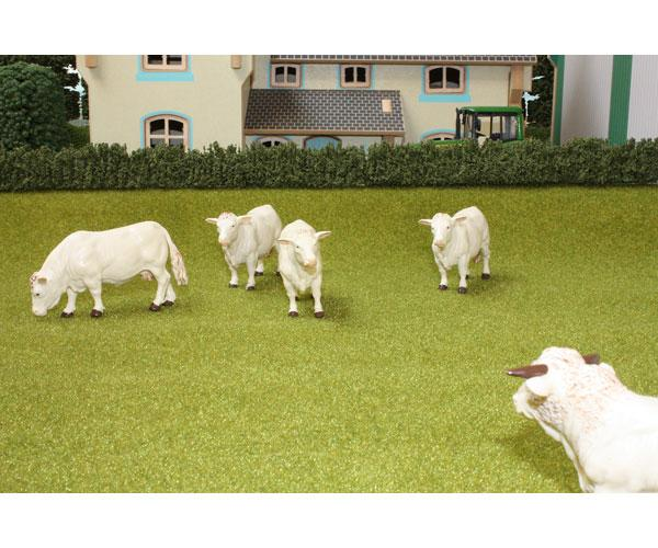 Hierba Brushwood Toys BT2071