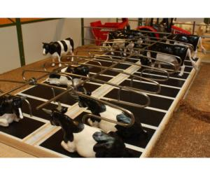 Cubículos dobles Brushwood Toys BT2099