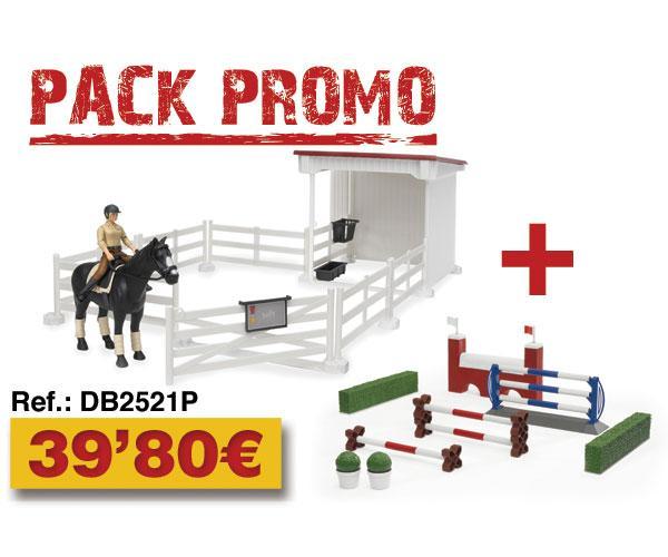 Pack vallado+caballo+jinete+obstáculos y setos