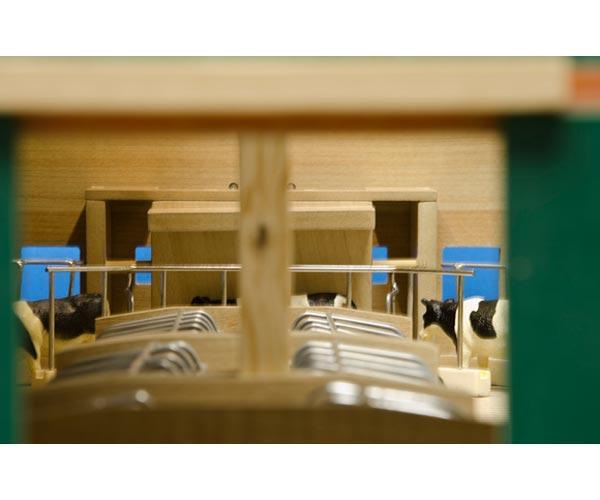 Granja abierta para vacas con cornadiza - Ítem3