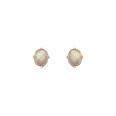 ANGELORUM EARRINGS FOR WOMEN 030003/29
