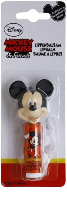 LABIAL DISNEY MICKEY MOUSE & FRIENDS
