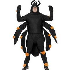Disfraz araña insecto