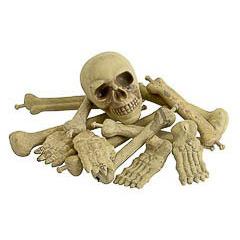 Bolsa 12 huesos humanos plástico