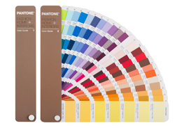 PANTONE FASHION & HOME COLOR GUIDE FHIP110N