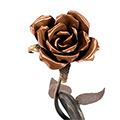 Rosa amb peana i escut català