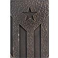 Detall de l'escut de ferro amb estelada