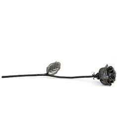 Rosa amb fulla de Ferro forjat