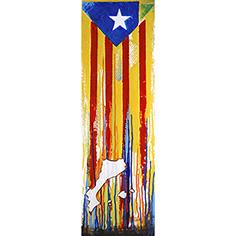 Estelada blava i Països catalans