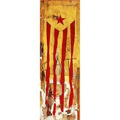 Estelada i perfil dels Països Catalans