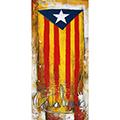 Opció del quadre amb estelada blava i lletres Catalunya