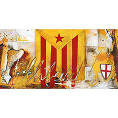 Estelada roja, escut de St. Jordi, mapa PP.CC.