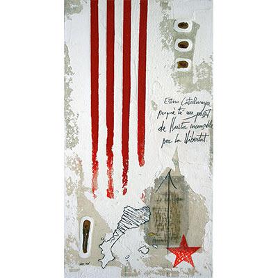 4 barres, estel roig, PPCC i 'Estim Catalunya...'