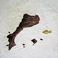 Detall dels Països catalans i el peix quatribarrat