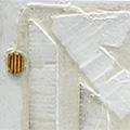 Detall del quadre amb estelada minimalista