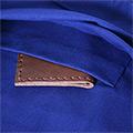 Butxaca interior de la bossa d'esquena amb estelada