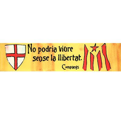 Imant amb escut St. Jordi i estelada