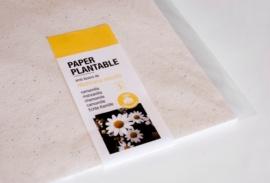 Paper plantable A4 - Camamilla