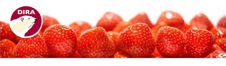 Frutas y purés de fruta