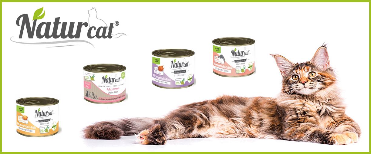 Aliment natural humit per gats