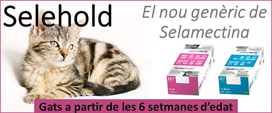 Selehold, pipetes antiparasitàries per gats petits a partir de les 6 setmanes d'edat, contra puces, polls, àcars i sarna