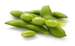 Beneficios del tejido de soja en la piel