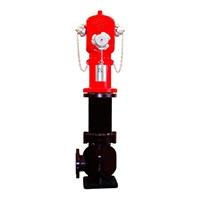 Hidrant de columna seca presa corba 3