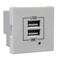 Carregador USB doble Tipus A. Marfil