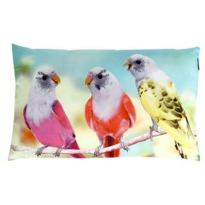 CUSHION PARAKEETS HF - Item2