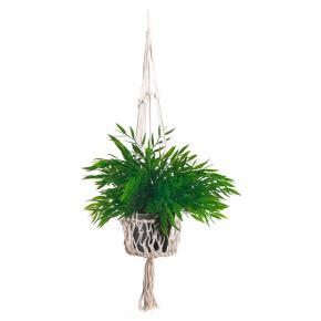 BIG PLANT ROPE BASKET HF - Item2