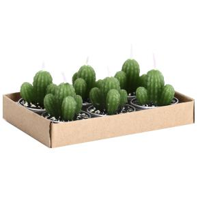 MINI CACTUS CANDLES HF