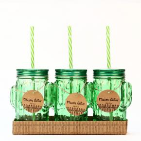 SET 3 MASON JAR CACTUS SET HF