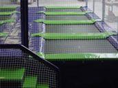 Camas elásticas en batería cuadradas