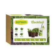 Kit horticultura urbana - Cocktail