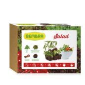 Kit huerto urbano Salad