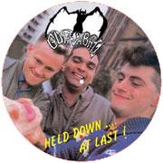 GUANA BATS Held Down At Last PICTURE LP