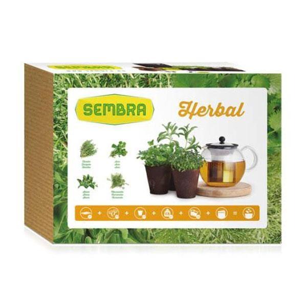 El Kit de cultivo Herbal viene con plantas aromáticas que además de ser bonitas, te permitirán hacerte unas infusiones naturales y tener una experiencia olfativa única.