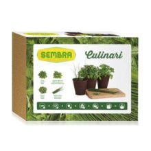 Kit de cultivo Culinario es ideal para iniciarse en la jardinería o la horticultura de manera fácil. El Kit Culinario está compuesto por las plantas más utilizadas en la cocina mediterránea.