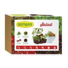 El Kit cultivo Ensaladas es ideal para iniciarse en la jardinería o la horticultura de manera fácil. El Kit Ensaladas viene con las mejores hortalizas para poder hacer una buena ensalada.