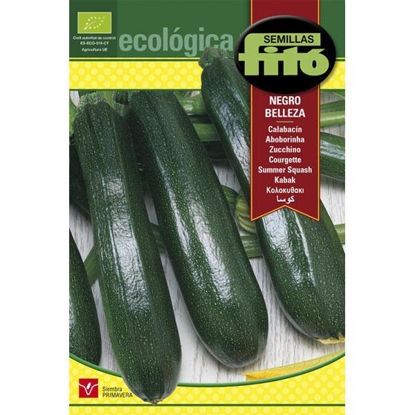 Semillas ecológicas de Calabacín negro Belleza de Semillas Fitó con más de 125 años de experiencia en la venta de semillas.