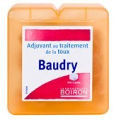 BOIRON BAUDRY PASTILLAS 70GR
