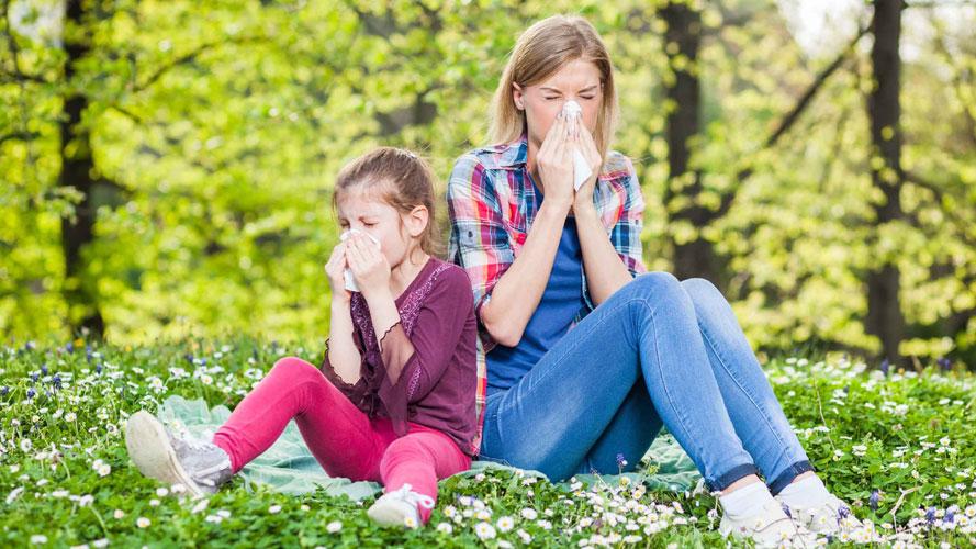 Suplementos naturales para las alergias