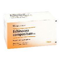 heel-echinacea-compositum-sn-50-ampollas