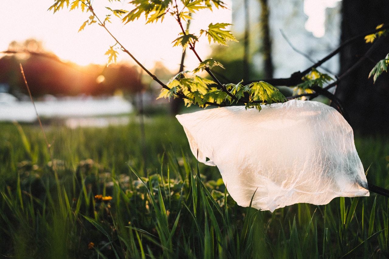 Baleares prohíbe los envases plásticos de un solo uso