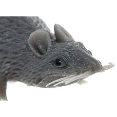 Ratón gris - Ítem