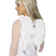 Alas ángel plumas blancas