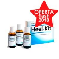 Heel Kit Terapia Detoxificación