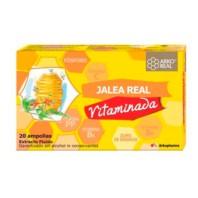 Arko Real Jalea Real Vitaminada, 20 ampollas | Farmaconfianza