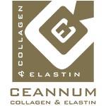 Ceannum