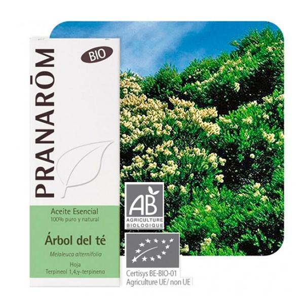 Pranarom Aceite Esencial Árbol del Té   Farmaconfianza   Farmacia Online